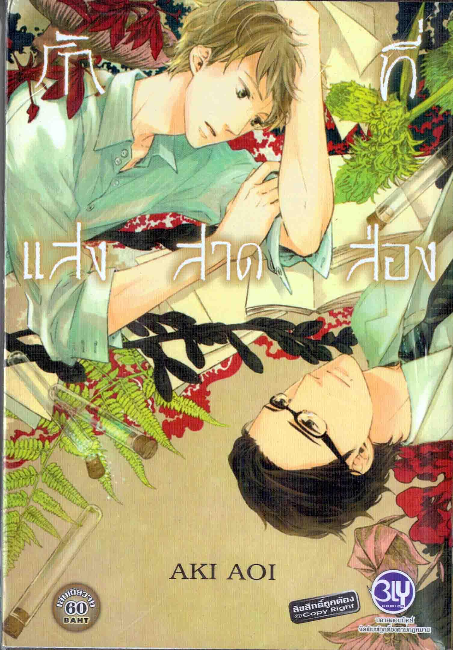 รักที่แสงสาดส่อง : Aki Aoi - ลายเส้นสวยมาก