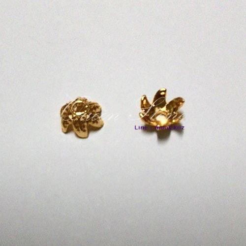 ตัวครอบสีทอง (1 คู่)