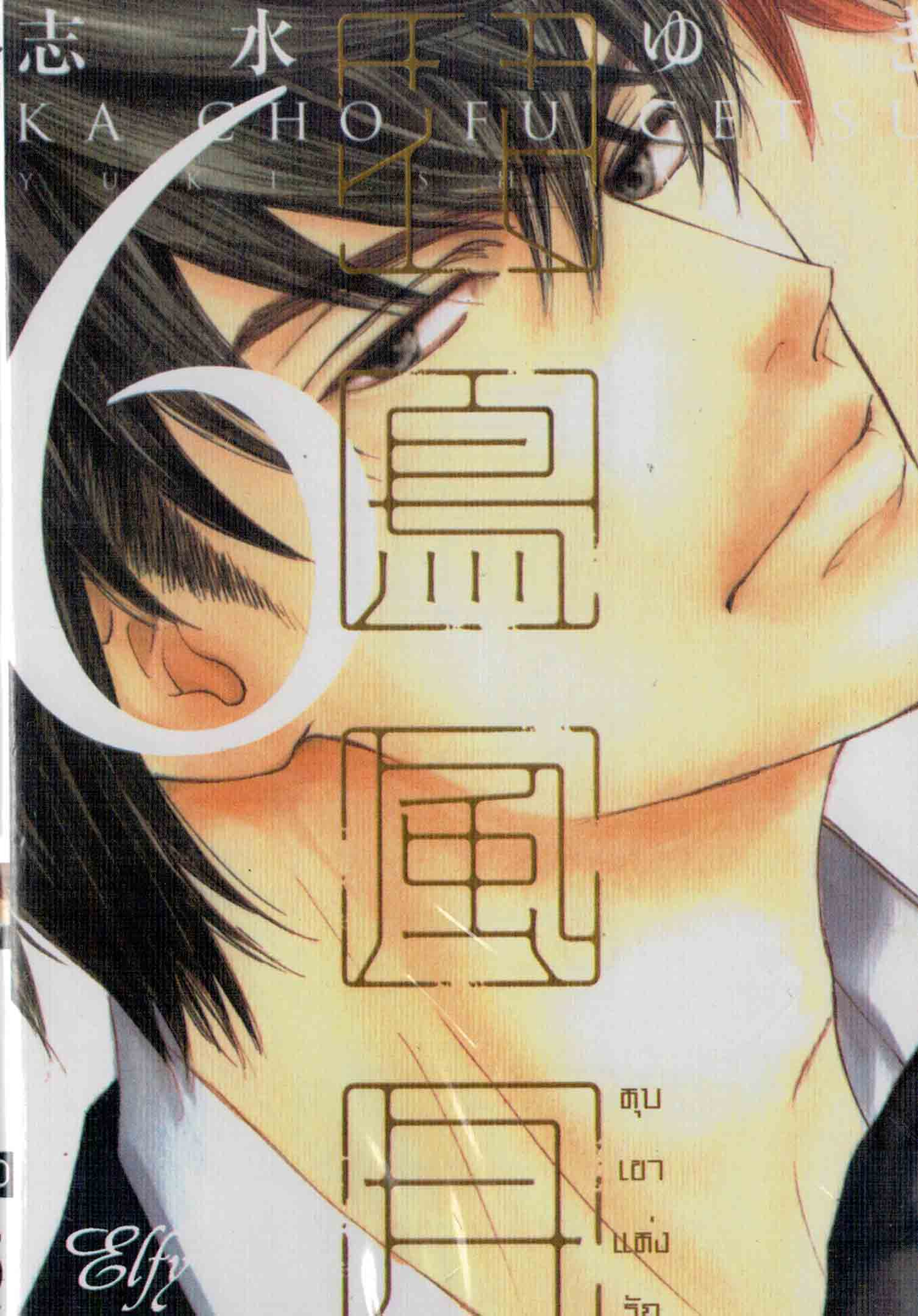 หุบเขาแห่งรัก เล่ม 06 : Yuki Shimizu