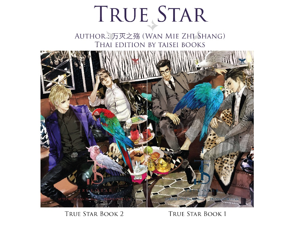 True Star 4 เล่มจบ : Wan Mie Zhi Shang (แปลจีน) สำเนา