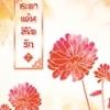 ชะตาแค้นลิขิตรัก เล่ม 2 : Yuan Bao Er/ แปล ฉินฉง