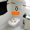 "Toilet Sticker ""Cuties Chick"" 20x24 cm"
