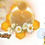 นมผึ้ง (Royal Jelly)เพื่อสุขภาพและความงาม