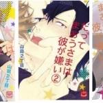 Datte Maou-sama wa Kare ga Kirai 3 เล่มจบ - Yamada Nichoume