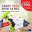 (2 กล่องเล็ก 60 เม็ด) Angel's secret Grape Seed Extract 60,000 mg .สารสกัดเมล็ด60,000 mg.สารสกัดจากเมล็ดองุ่นเข้มข้นที่สุด บำรุงผิวให้ขาวกระจ่างใส ลดเส้นเลือดขอด จากออสเตรเลีย thumbnail 8