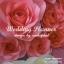 package photo backdropดอกไม้กระดาษ เช่าฉากถ่ายภาพงานแต่งงานโทนชมพู ยาว4เมตร thumbnail 3
