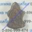 เต่า นะหน้าทอง หลวงปู่นาค วัดดอนเสือ thumbnail 2