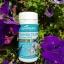 รกแกะ Goodhealth Sheep Placenta 25,000 mg. plus Grape Seed 2,000 mg. 1 ขวด 60 เม็ด บำรุงผิวสวยอ่อนเยาว์ จากนิวซีแลนด์ thumbnail 2