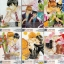 น้องหมาตามหารัก 5 เล่ม + เล่มพิเศษ - Ritsu Natsumizu thumbnail 2