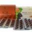 รกกวาง 50,000mg.30 เม็ด+ สารสกัดเมล็ดองุ่นแองเจิลซีเครท 60,000 mg.30 เม็ด ผิวขาวกระจ่างใส ไร้ฝ้ากระจุดด่างดำ ผิวอ่อนเยาว์เด้งเด็ก ดูไม่โทรมไม่แก่ และสุขภาพดี thumbnail 1