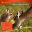 (แบ่งขาย 30 เม็ด) Wealthy Health Deer Placental 50,000 mg รกกวางที่สุดของอาหารเสริมต้านชรา เพิ่มพลัง ชะลอความแก่ thumbnail 10