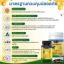 Auswelllife Royal Jelly 2180 mg. นมผึ้งบำรุงผิวสวยสุขภาพก็ดี ชะลอวัย นมผึ้งจากออสเตรเลีย บรรจุ 365 เม็ด มีอย. thumbnail 2