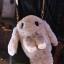 กระเป๋ากระต่ายขนปุย สายโซ่ทอง 8 นิ้ว thumbnail 3