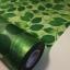 """สติ๊กเกอร์ติดกระจกแบบมีกาวในตัว """"Green Leaves"""" หน้ากว้าง 90 cm ตัดแบ่งขายเมตรละ 189 บาท (ขั้นต่ำ 3m) thumbnail 1"""