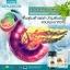 ผลิตภัณฑ์เสริมอาหาร Benjakun เบญจคุณ เลข อย. 50-2-05959-2-0012 บรรจุ 120 แคปซูล thumbnail 3