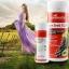 (แบ่งขาย 60 เม็ด) goodhealth สารสกัดเมล็ดองุ่น 55,000 mg. มี OPC 412 MG.จากนิวซีแลนด์ เพื่อผิวกระจ่างใสและสุขภาพดี thumbnail 4
