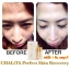 ชาลิต้า CHALiTA Perfect Skin Recovery Cream thumbnail 11