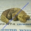 พญากุมภาเศรษฐี (จระเข้ เสาร์๕) พระอาจารย์ซ้ง วัดประดู่ thumbnail 2