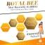 Royal Bee Maxi Royal Jelly นมผึ้งรอยัลบี นมผึ้งสัดเย็น ดูดซึมดี ผิวสวยสดใส สุขภาพดี ปรับสุมดุลฮอร์โมน ขนาด 30 เม็ด มีอย. thumbnail 14